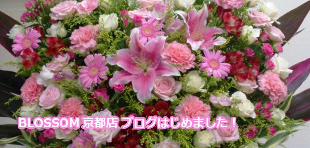 BLOSSOM京都店ブログはじめました