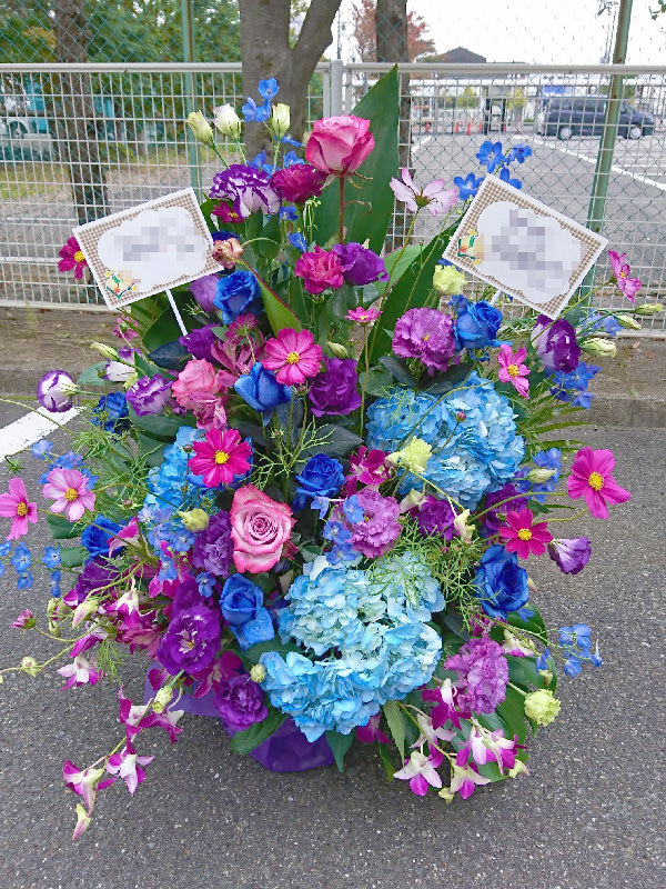 アレンジメントコスモス紫陽花青バラ